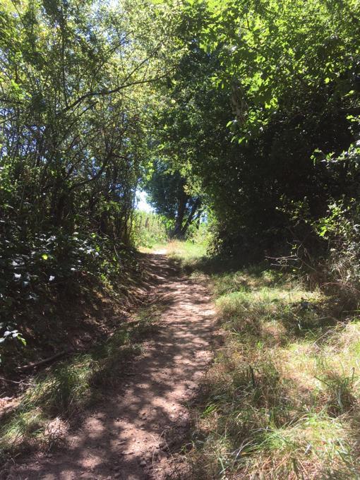 Ecologisch MAGIS-midweek in de Ardennen 9