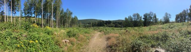 Ecologisch MAGIS-midweek in de Ardennen 10