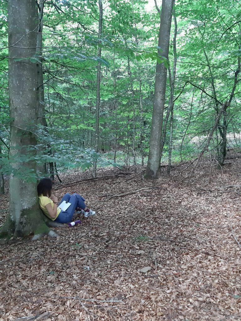 Ecologisch MAGIS-midweek in de Ardennen 6