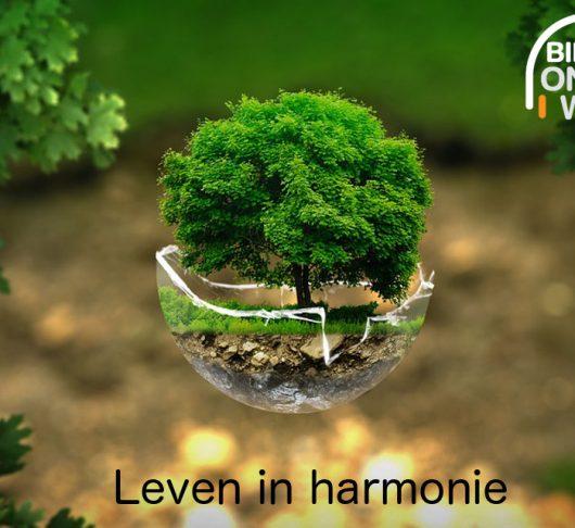 Leven in harmonie