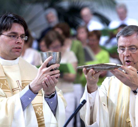 Priesterwijding Walter Ceyssens sj